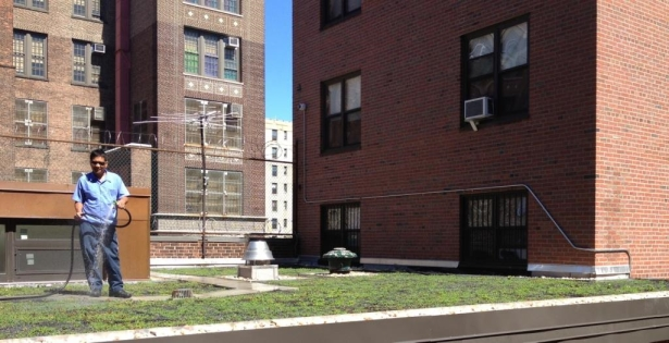 Findlay Teller Apartments Green Roof