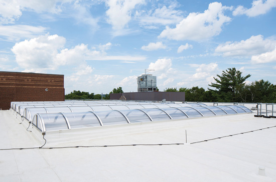 Single-Ply Roofing Membrane Durability.