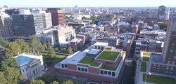 Green roof integration 2